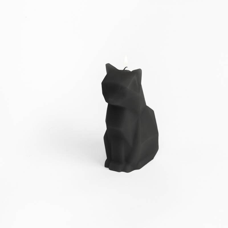 chatnoir