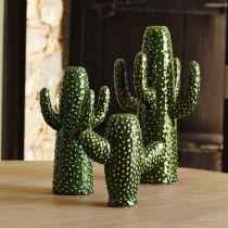 vase-cactus-ampm