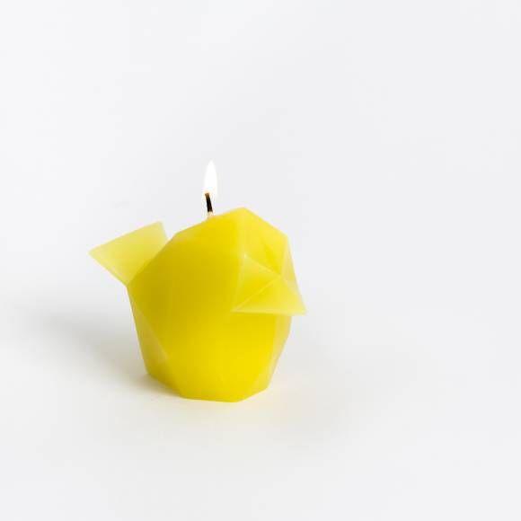 pyropet-bibi (4)
