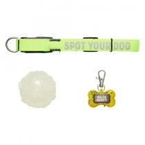 Accessoires fluorescents pour chien - Wild+Wolf