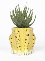 Pot Cheetah - DOIY
