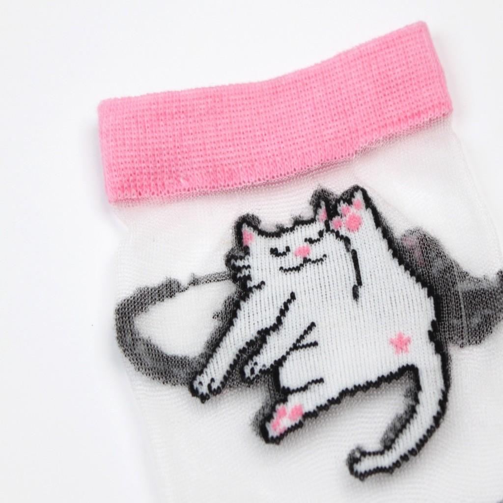 Chaussettes transparentes chat - Coucou Suzette