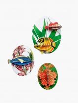 Décoration boîte collector poissons volume 2 - Studio Roof