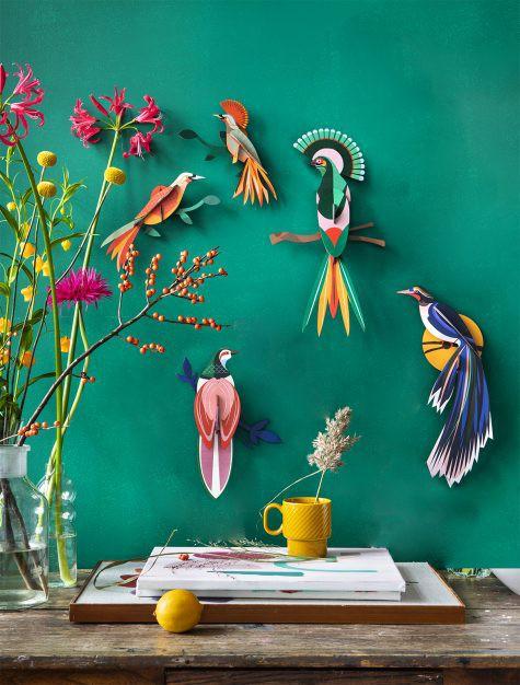 Décoration murale l'Oiseau du paradis Flores - studio ROOF