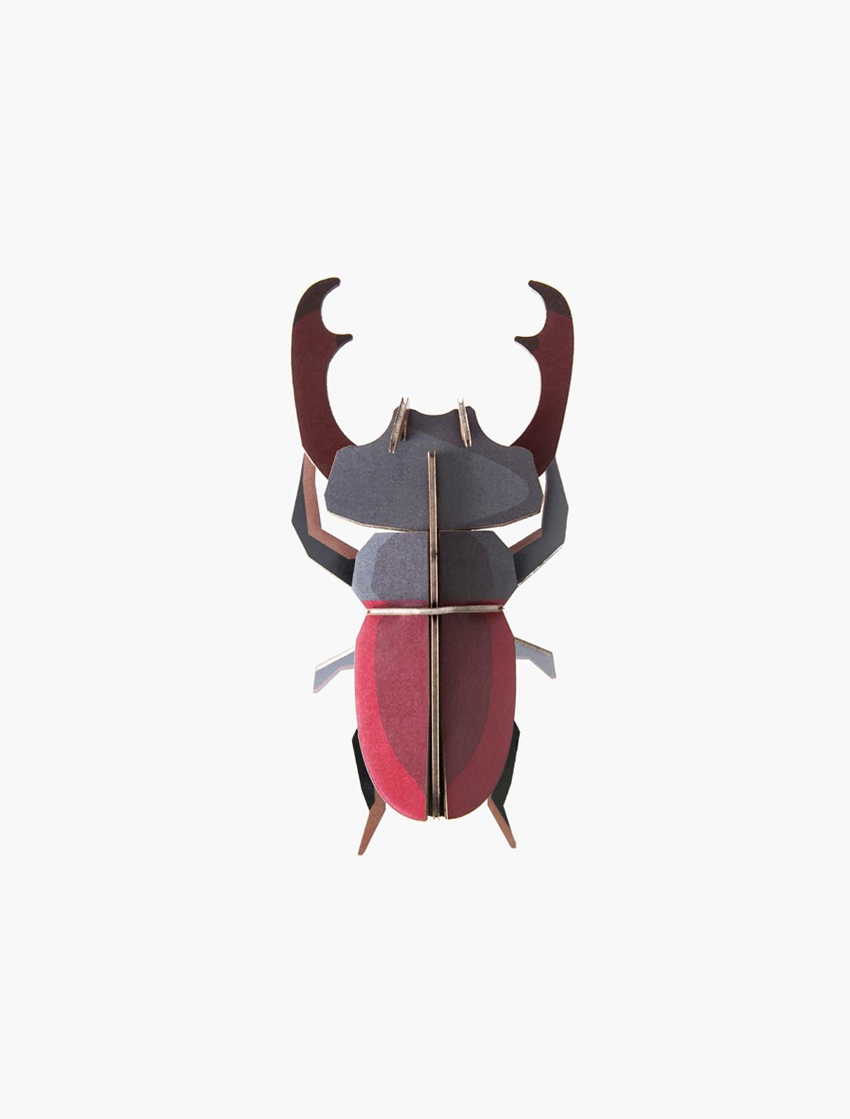 Décoration Stag Beetle - studio ROOF