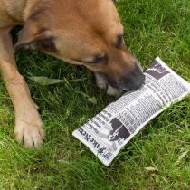 Jeu pour chien Fake News - Kikkerland