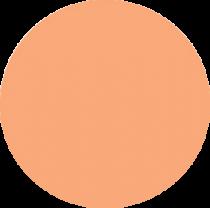 Nuancier - Rose flamant - Tolix