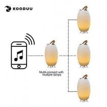 Pot à champagne lumineux / enceinte - Kooduu