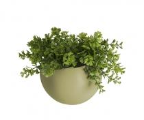 Pot à fleurs mural - Globe - Present time