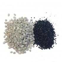 SERRE JURASSIC CASTANOSPERMUM L - GREEN FACTORY