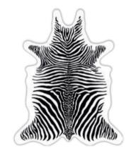 set de table zebre en forme de peau de vache