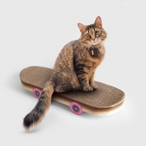 Skateboard à gratter chat - SUCK UK