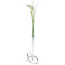 VASE FLOWER LOOP - Chrome